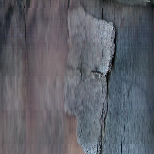 pinestump